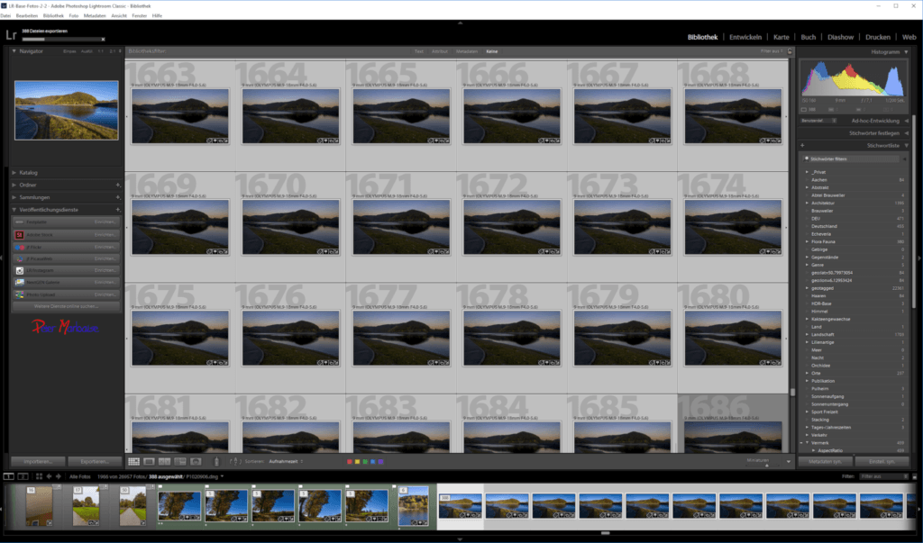 Bibliotheksfenster von Lightroom mit geladenen Vorschau-Dateien