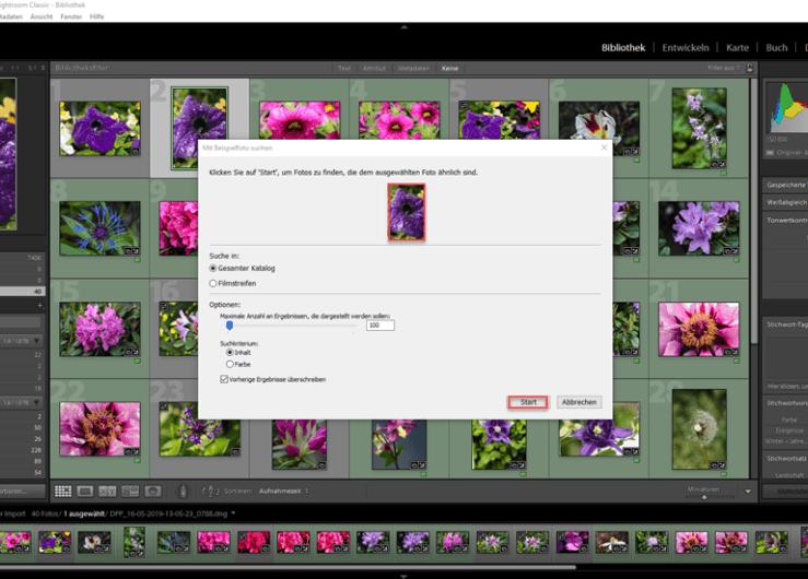 Bildersuche mit Excire Search mit einem Referenzbild