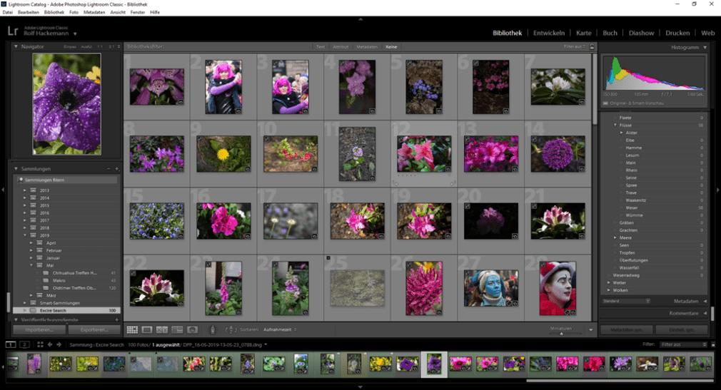 Ergebnisausgabe der Bildersuche mit einem Referenzbild mit Excire Search