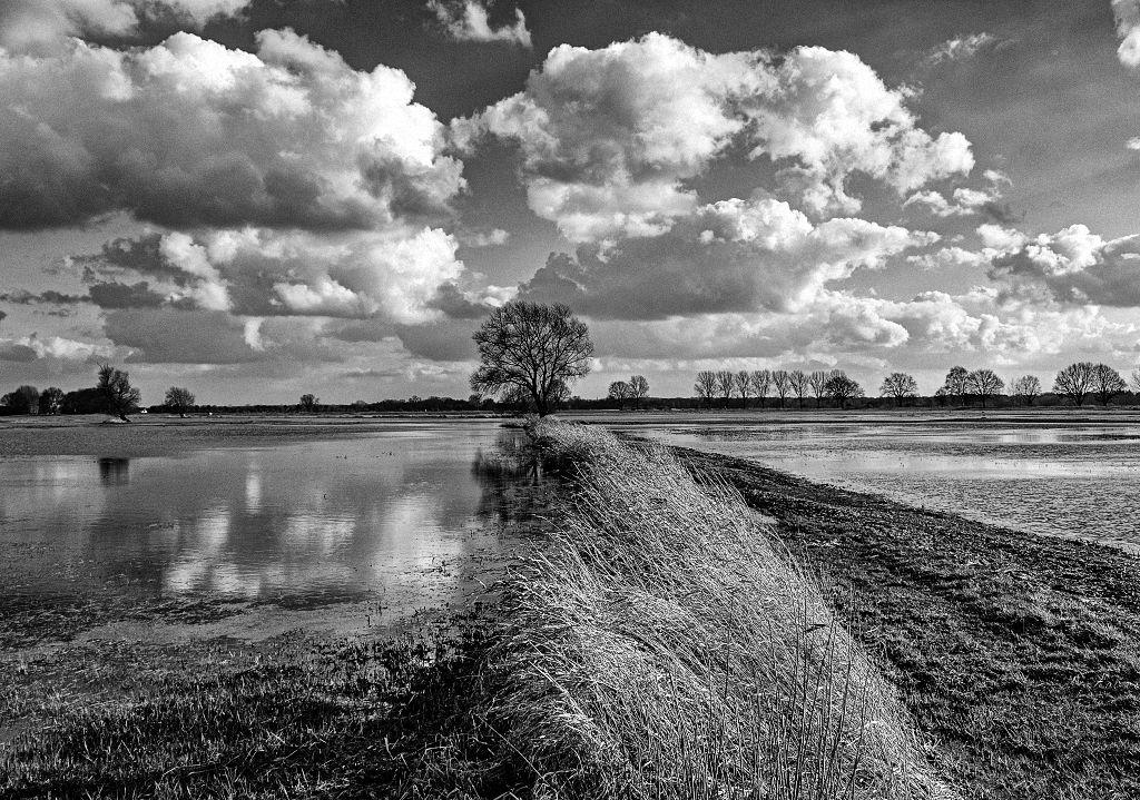 Tipps für die Schwarz Weiss Fotografie in der Landschaft: Landschaftsfoto der Wümmeniederung bei Fischerhude mit bewölktem Himmel