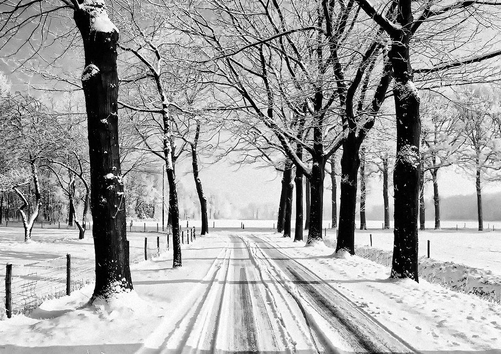 Winterlandschaft mit Spuren im Schnee