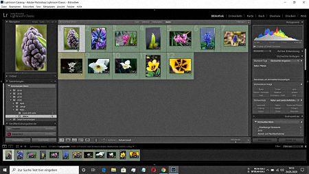 Beitragsbild von Lightroom Sammlung als Katalog exportieren